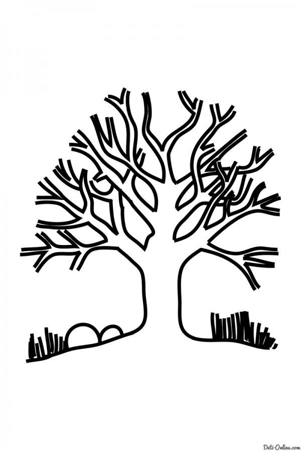 Раскраска Дерево без листьев   РАСКРАСКУ .РФ - распечатать ...