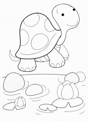 Раскраска Черепаха