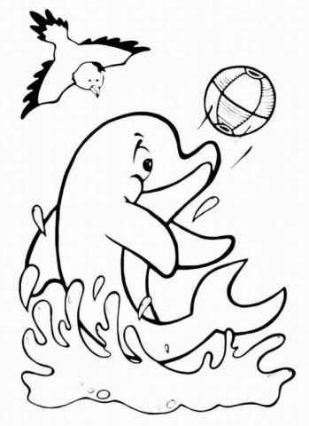 """Раскраска """"Дельфин"""""""