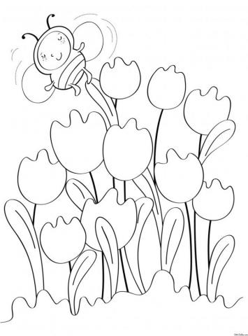Раскраска Тюльпаны и пчелка