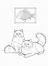 """Раскраска """"Кошка"""""""