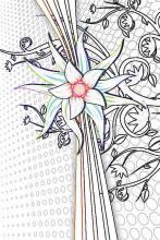 Раскраска  напоминает цветок шиповника.