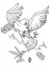Раскраска фея и орел
