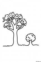 Раскраска Дерево большое и маленькое