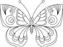 Раскраска бабочка с очень красивыми крыльями
