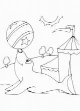 Раскраска Тюлень