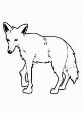 """Раскраска """"Волк"""""""