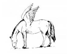 Раскраска лошадь с  крыльями